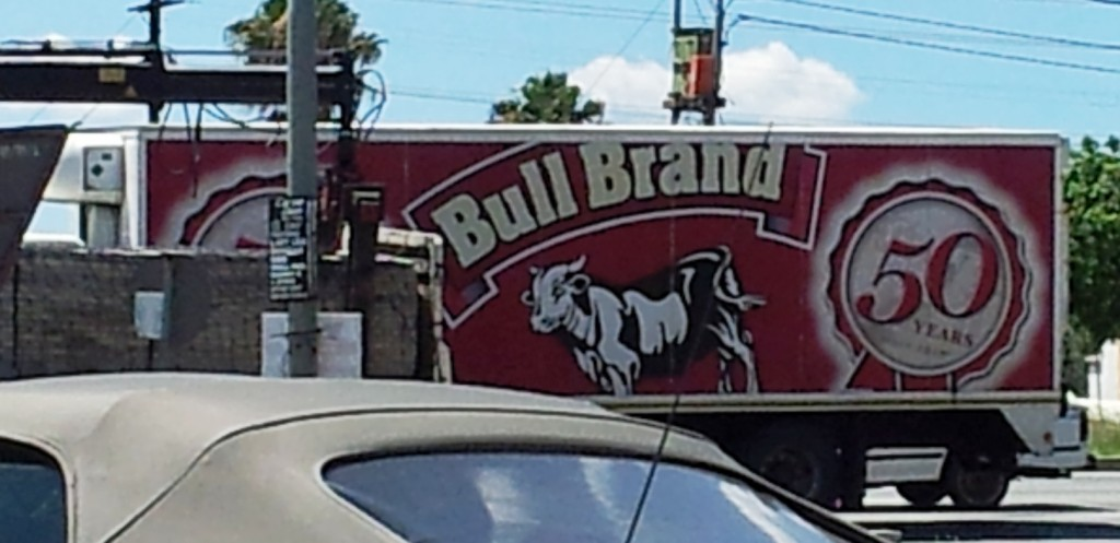 bull brand1 1024x497 Boldly Be; A Secret To Brand Loyalty